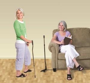 walking-sticks-blog